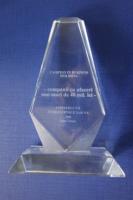 Trofeu Campioni in business Moldova